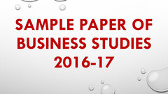 (Hindi) Previous Year Paper of Business Studies